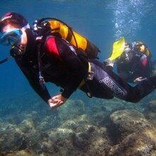 Brevet de Plongée PADI Open Water à Antibes