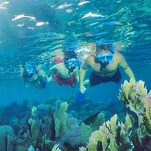 Randonnée Palmée à Antibes