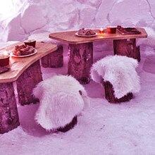 Diner dans un Igloo aux Arcs