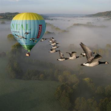 Vol en Montgolfière avec les Oiseaux dans le Cantal