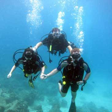 Plongée sous marine en région Provence-Alpes-Côte d'Azur et Corse