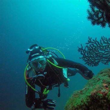 Brevet de plongée Niveau 1 CMAS (Saint-Raphaël) en région Provence-Alpes-Côte d'Azur et Corse