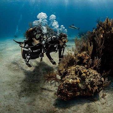 Baptême de plongée sous-marine près de Biarritz