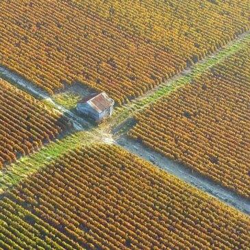 Rethel, Ardennes (08) - Baptême de l'air montgolfière