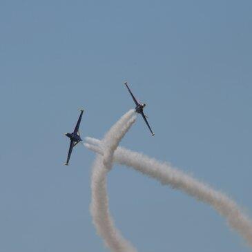 Aérodrome de Melun Villaroche, à 40 min de Paris, Paris (75) - Vol avion de chasse