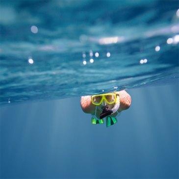 Snorkeling, département Corse du Sud