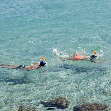 Snorkeling, département Pyrénées orientales