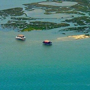 Baptême en Hélicoptère - Survol de l'Île aux Oiseaux