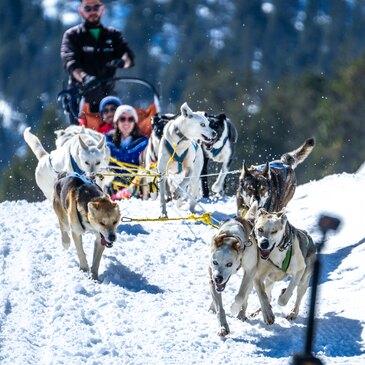 Randonnée chiens de traîneau près d'Ax-les-Thermes