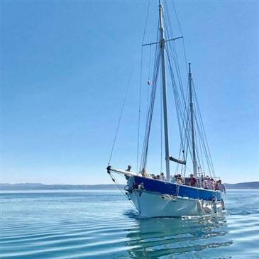 Journée en voilier dans les calanques de Marseille