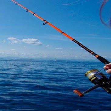 Pêche au gros, département Landes