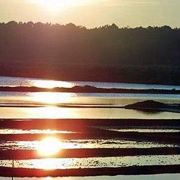 Week End Golf à La Baule Golf de Guérande en région Pays-de-la-Loire