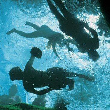 Snorkeling, département Ille et vilaine