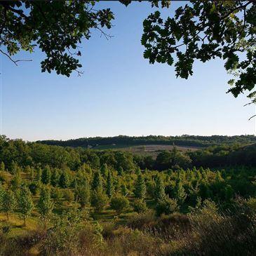 Cabane Perchée avec Spa & Sauna près de Montauban en région Midi-Pyrénées