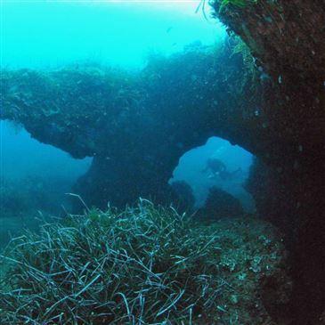 Santa Maria Poggio, Haute Corse (2B) - Baptême de plongée