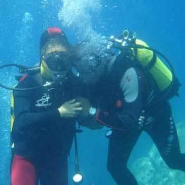Plongée sous marine, département Corse du Sud