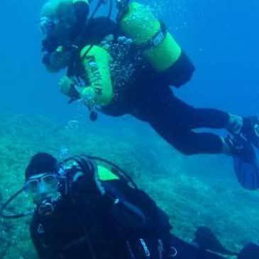 Plongée sous marine proche Calcatoggio