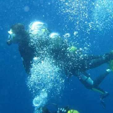 Brevet de Plongée Niveau I dans le Golfe de Sagone
