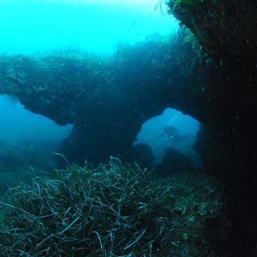 Santa Maria Poggio, Haute Corse (2B) - Plongée sous marine Brevet