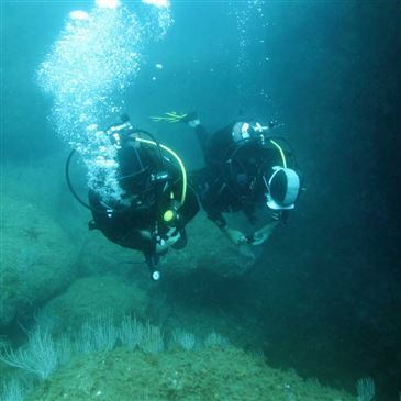 Baptême de Plongée à Banyuls-sur-Mer en région Languedoc-Roussillon