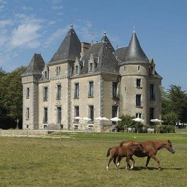 Week end Gastronomique en région Pays-de-la-Loire
