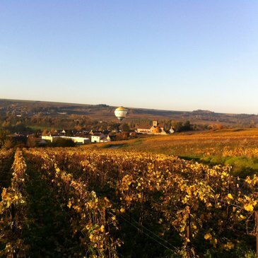 Vol en Montgolfière à Reims - Les Vignobles Champenois