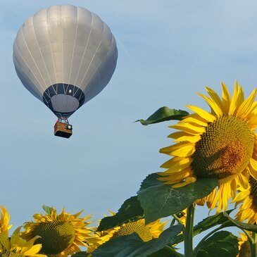 montgolfiere 82