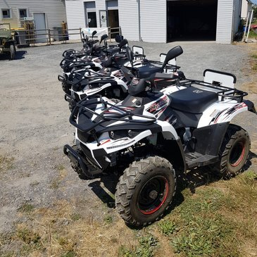 Quad & Buggy en région Basse-Normandie