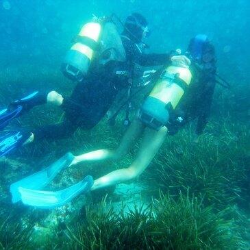 Baptême de plongée , département Corse du Sud