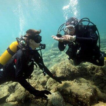 Brevet de Plongée au Cap Cerbère près de Banyuls-sur-Mer