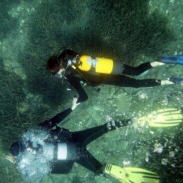 Brevet de Plongée Sous Marine, département Pyrénées orientales