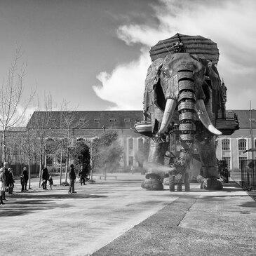 Cours de Photographie proche Nantes