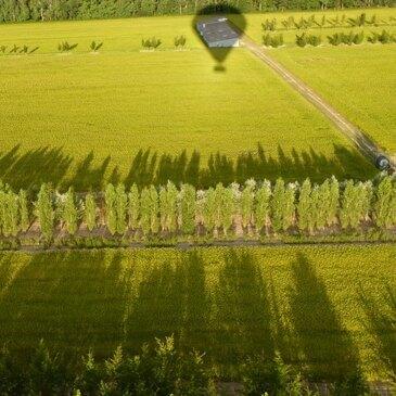 Chaumont-sur-Loire, Indre et loire (37) - Baptême de l'air montgolfière