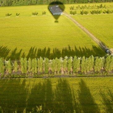 Amboise, Indre et loire (37) - Baptême de l'air montgolfière