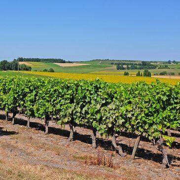 Charente maritime (17) Poitou-Charentes - WEEK END