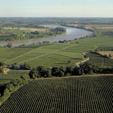 Œnotourisme près de Bordeaux en région Aquitaine