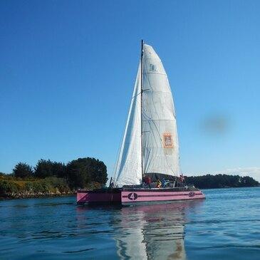 Initiation à la Voile dans le Golfe du Morbihan