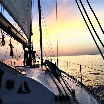 Port-Camargue, Gard (30) - Balade en bateau