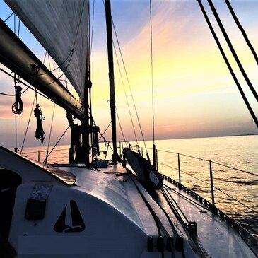 Sortie Privative en Catamaran de Course à Port-Camargue