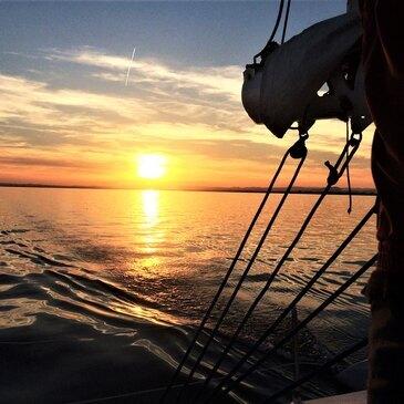 Balade en bateau proche Port-Camargue