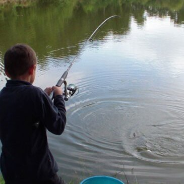 Stage de Pêche Sportive à La Roche-sur-Yon en région Pays-de-la-Loire