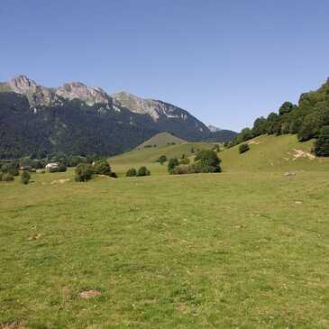 Chien de Traîneau en région Aquitaine