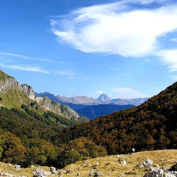 Stage de Survie en vallée d'Aspe près de Pau en région Aquitaine